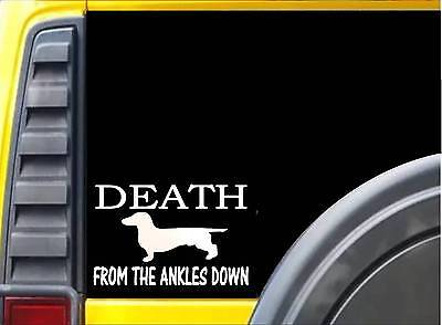 Death from the Ankles Down K468 8 inch Sticker dachshund dog decal