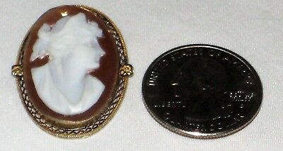 Vintage Gold Filled / Plated Shell Cameo 1 x 1 1/8 Inch Brooch 4.3 Grams