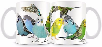 Budgerigar Mug 11oz Budgies