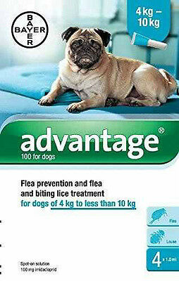 Advantage 100 Spot-On Flea Solution for Small Dogs 4-10kg,