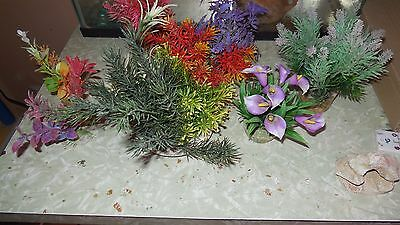 Lot Decoration Plante Aquarium