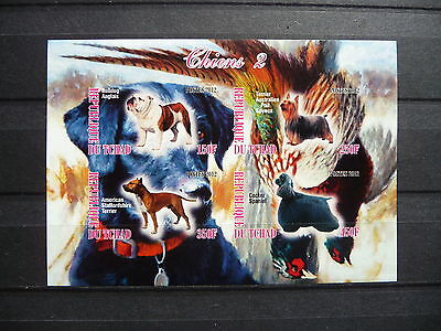Hunde 06 dogs Chiens Tiere animals pets Fauna Block KB sheets postfrisch ** MNH