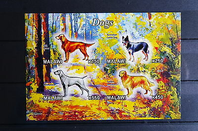 Hunde 10 2 dogs Chiens Hausiere pets Fauna Block KB sheets postfrisch ** MNH