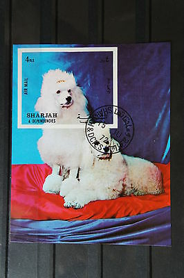 Hunde 45 dogs Chiens Pudel Haustiere pets Block KB sheets postfrisch ** MNH