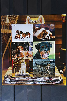 Hunde 51 dogs Chiens Haustiere pets Dackel Block KB sheets postfrisch ** MNH