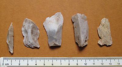 Irish Early Mesolithic Microlithic Blades  c.8000 BC Ireland MB8