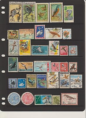 Stamps - Birds from around the world