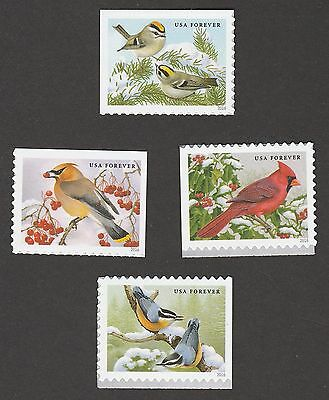 US 5126-5129 Songbirds in Snow forever set (4 stamps) MNH 2016