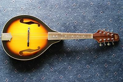 Rogue Mandolin with Stagg padded case, Great tone.