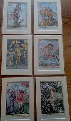"""6 VINTAGE CICELY BARKER FLOWER FAIRIES PRINTS 7x5 """" Mounted Ready To Frame Veg"""