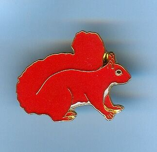Red Squirrel Pin Badge