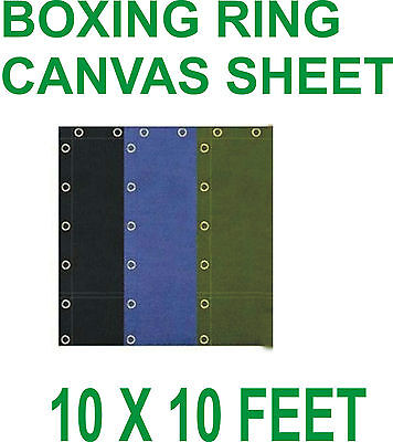 """Boxing Ring Canvas Top Quality 10' X 10""""feet In Black,Blue and Green"""