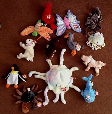 bundle of  13 Ty Beanie Babies  Baby Animal Ty toys with tags