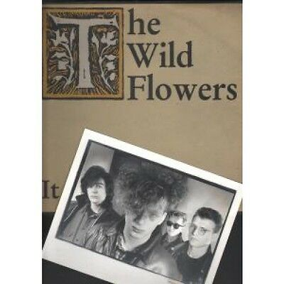 "WILD FLOWERS It Ain't So Easy 12"" VINYL 3 Track With Black And White Promo"