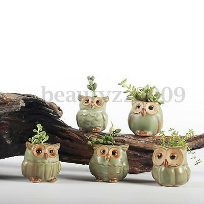 Mini Small Ceramic Owl Succulent Plant Pot Flower Planter Garden Home Decoration