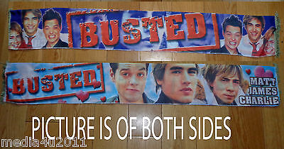 Busted Rare Vintage Concert Tour Scarf Now Reformed New