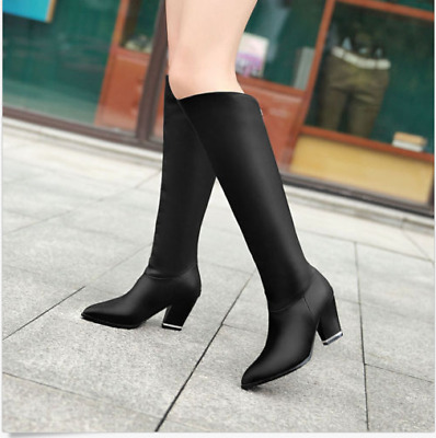Womens Pointy Toe Riding Zip Winter Cuban Heel New Knee High Boots Shoes Plus Sz