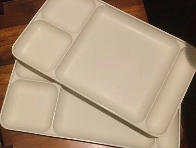 Tupperware Bbq Or Picnic Plates X 2 - Very Useful