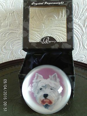 Crystal Paper Weight With A Picture Of West Highland White Dog New In Box