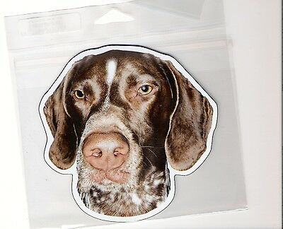 German Short Hair Pointer  4 inch face magnet for car or anything metal     New