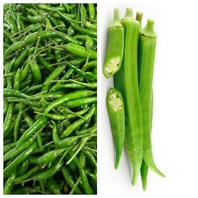 Fresh Green Chillies 100g+ Fresh Okra (Bhindi/ Ladies Finger) 200g