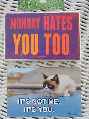 FUNNY Large Grumpy Cat Stickers & Magnet Stocking Stuffer Lot ~ NEW ~ Hilarious