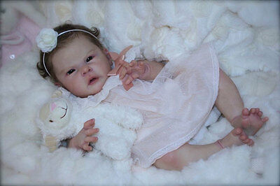 REBORN KIT NOVA by CASSIE BRACE+ BODY+TUMMY PLATE+COA+CLOTHES~SOLD OUT LTD ED