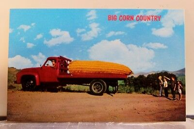 Scenic Big Corn Country Postcard Old Vintage Card View Standard Souvenir Postal