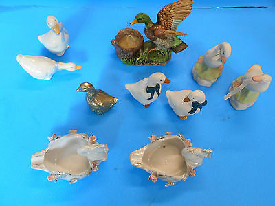 large lot of 10 nothing but ducks