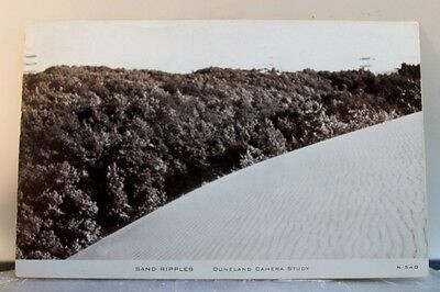 Scenic Duneland Camera Study Sand Ripples Postcard Old Vintage Card View Post PC