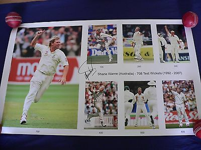 Signed Shane Warne montage celebrating his Test Match Cricket wicket milestones