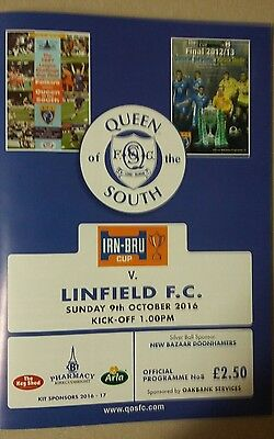 Queen of the south v Linfield Irn-Bru Cup 2016/17