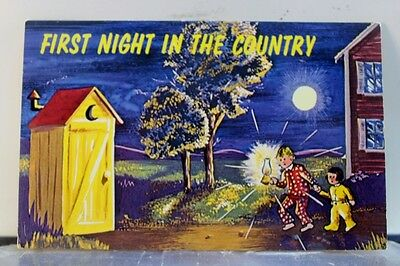 Scenic First Night In the Country Postcard Old Vintage Card View Standard Post