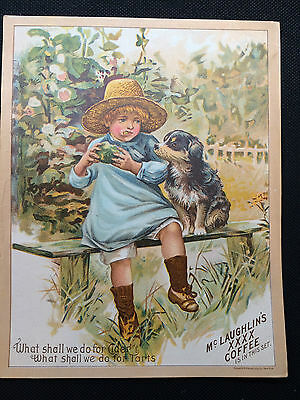 LARGE  McLAUGHLIN'S COFFEE TRADE CARD CIDER AND TARTS