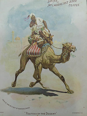 LARGE  McLAUGHLIN'S COFFEE TRADE CARD POSTMAN OF THE DESERT