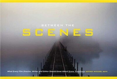 Between the Scenes: What Every Film Director, Writer, and Editor Should Know Ab.
