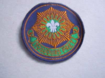 US Army Patch cut edge