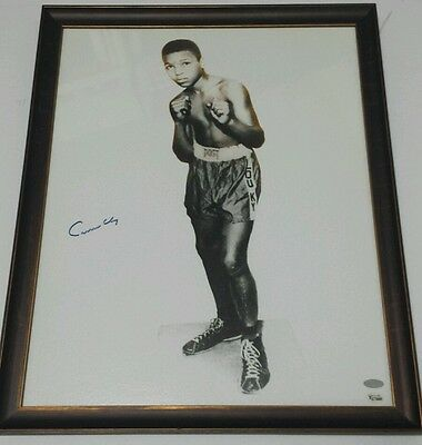 Cassius Clay Signed Framed 16X20 Online Authentics and Steiner COA Muhammad Ali