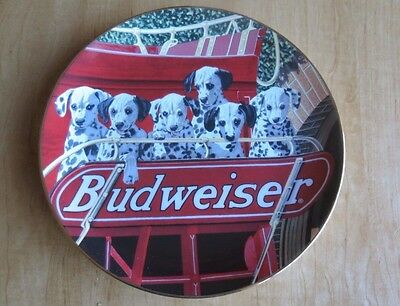 """Dalmation RARE Budweiser """"Six Pack"""", Authentic Collectible Plate"""
