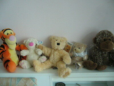5 new teddy bears soft toys