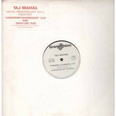 "TAJ MAHAL Everybody Is Somebody 12"" VINYL 2 Track Promo With Info Stickered"