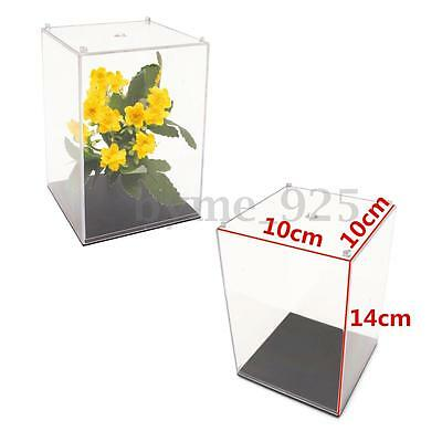 "14cm 5.5"" Transparent Acrylic Display Box Case Dustproof Tray Protection Toy"