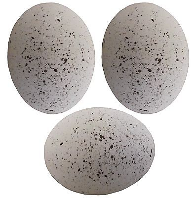 3 Pack Speckled Ceramic Dummy Bird Quail Nest Egg Hatching Craft Nesting Dove