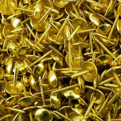 Upholstery nails 10mm Furniture chair tacks pins studs dome nail Brass Plated