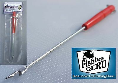 MEDIUM Squid / Fish Humane Disposal Spike - Kill Spike (Australian Seller)