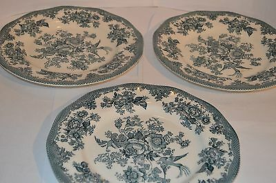 3 Enoch Wedgwood Tunstall Dinner Plates Asiatic Pheasants Pastel Blue