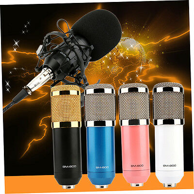 Professional Condenser Microphone Studio Sound Recording And Shock Mount F&