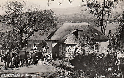 Postcard South Africa early view of A Voortrekker Homestead RP