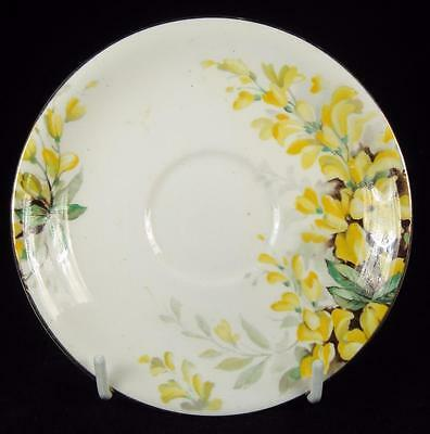 Royal Standard Yellow 'Laburnum' Flowers Bone China Orphan Saucer