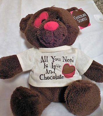 Chocolate Scented Plush Valentine Bear - 14 inches tall